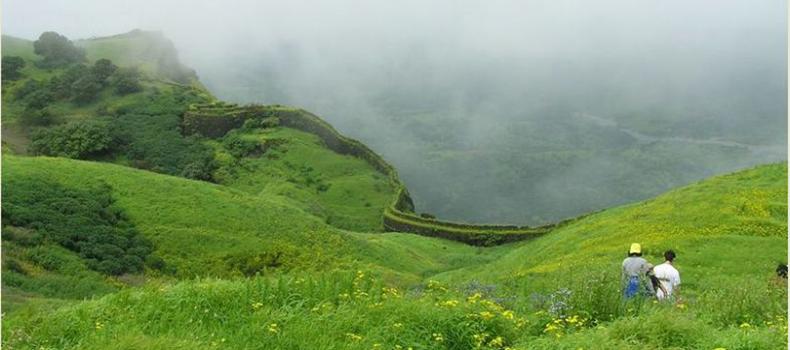 green Goa
